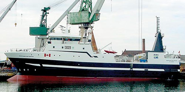 Newfoundland Lynx